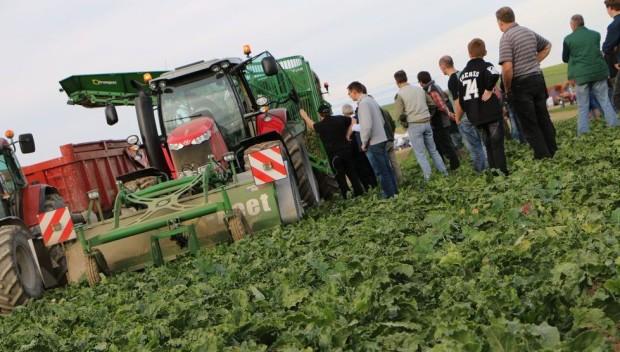 L'ensemble d'arrachage décomposé de Franquet X-beet et X-load en démo dans l'Aube durant une journée betterave organisée par la fédération départementale des Cuma du département.