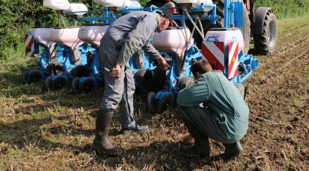 Le management et le secteur agricole.