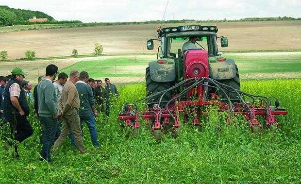 Sous l'œil des agriculteurs, les performances de chaque semoir sont évaluées : dose réellement semée, vitesse, profondeur de semis, nombre de grains en surface.
