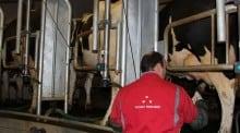 Crise de elevage agriculture lait porcs aides prix