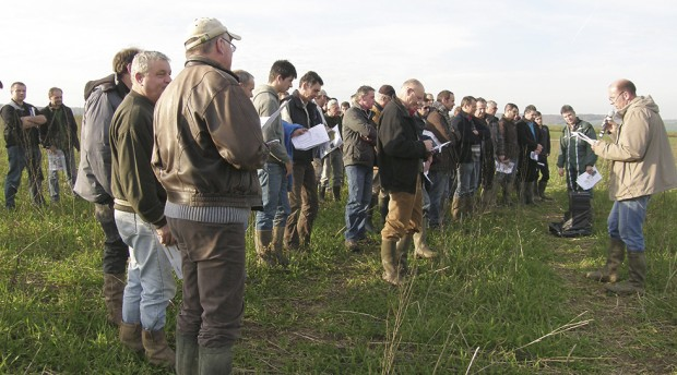 Les agriculteurs ont visité les différentes bandes d'orge de l'expérimentation pour connaître les performances des semoirs.