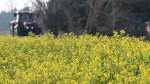 images agriculture francais choix bio raisonnee industrielle