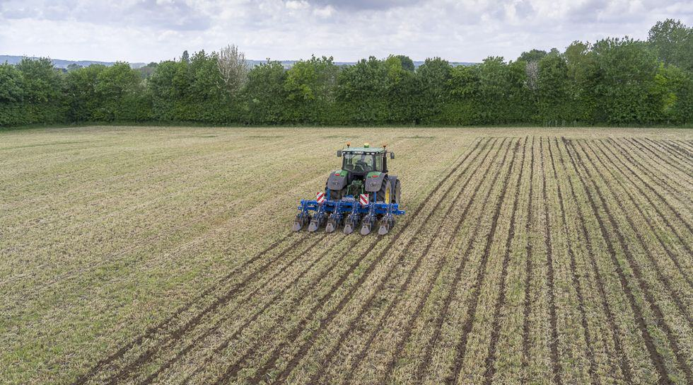 strip-till mais semis méteil