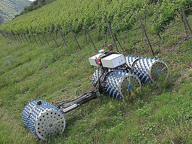 un dr le de tracteur pour les vignes en pente entraid. Black Bedroom Furniture Sets. Home Design Ideas