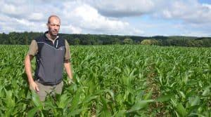 Bien que l'intervention de rattrapage du désherbage n'ait pu avoir lieu au stade optimal de la culture, l'agriculteur est satisfait de son semis de maïs 2016 fait avec son outil Twin-Row.