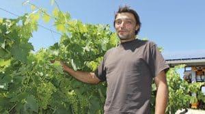 Emmanuel Savariau viticulteur Rencontre Cognac