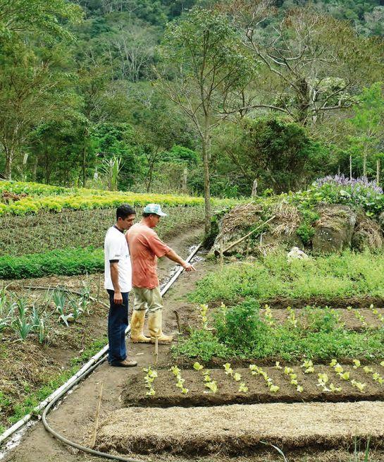 Moins d'un pour cent des propriétaires possède 43 % de la surface rurale.