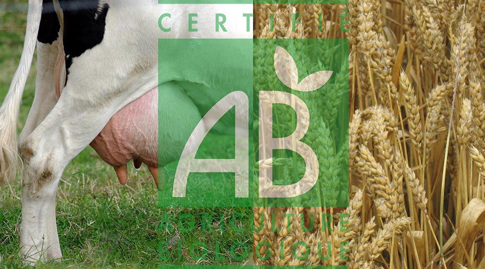 développement de l'agriculture biologique
