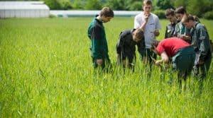 Augmentation du nombre d'élèves dans le secteur agricole