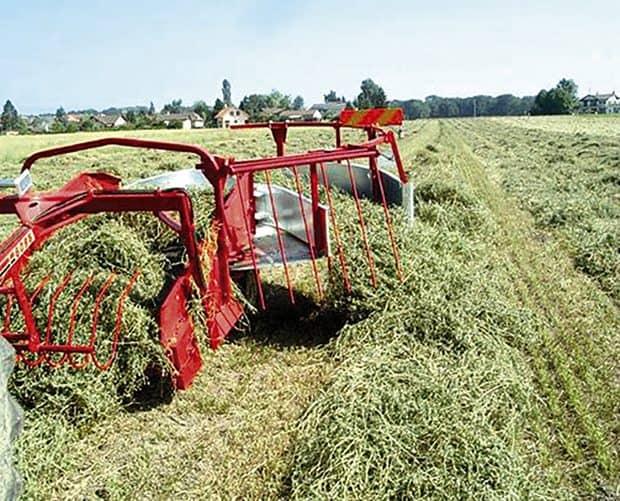 agroécologie_récolte_de_fourrages