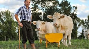 AFP revenus agriculteurs.