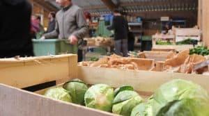 légumes vente directe cagettes