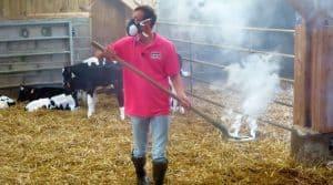 Prévention, veaux, bovins, élevage, vaccination, vétérinaire,