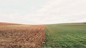 Terres agricoles françaises, une lutte contre l'accaparement des terres agricoles et au développement du biocontrôle par des investisseurs.