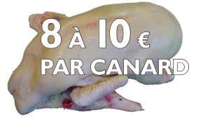 Indemnisation canard