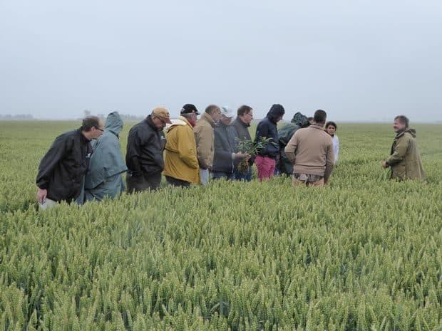 NZ Agroconsultant 2