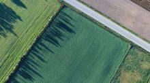 AFP foncier terres accaparement agricole