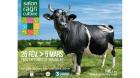 Fine bretonne pie-noire égérie Salon de l'Agriculture.