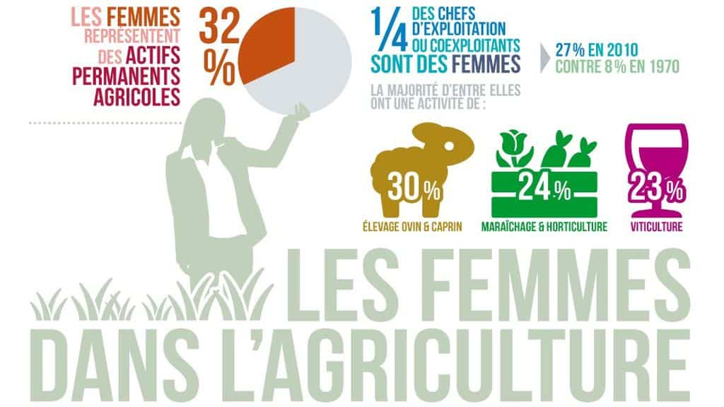 infographie ministère agriculture