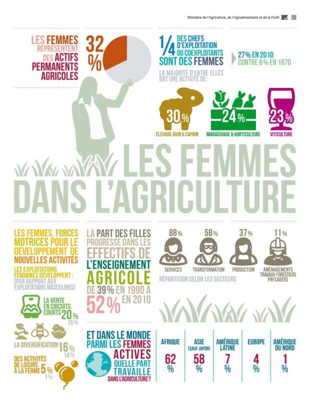 infographie femmes dans agriculture