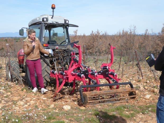 alpes de haute provence, viticulture, desherbage mécanique
