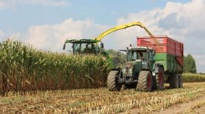chantier d'ensilage de maïs en cuma