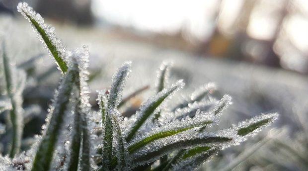 prévisions météos incidents climatique solutions agricole
