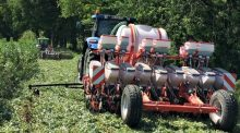 semis direct maïs sous couvert essais ecartement inter rang rendement