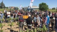 Le 19 avril à Pomerols (34), la démonstration d'outils de travail du sol a réuni une quinzaine de constructeurs et pas moins de 200 viticulteurs.Méditerranée démonstration interceps Languedoc-Roussillon matériel travail du sol.