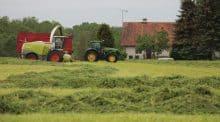 L'herbe est stratégique pour l'élevage de 450 vaches.