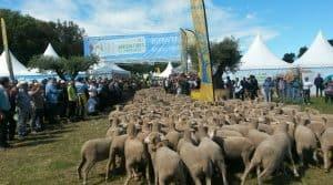 Bouches du Rhône Salon des Agricultures de Provence