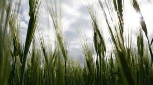 Pacte pour le développement de l'agriculture biologique signé mercredi 05 juillet 2017 en Nouvelle Aquitaine