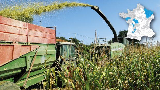 chantier ensilage maïs Arvalis Entraid Partenariat cartes prévisionnelles