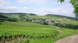 Charte visant à limiter l'usage des pesticides en Bourgogne.