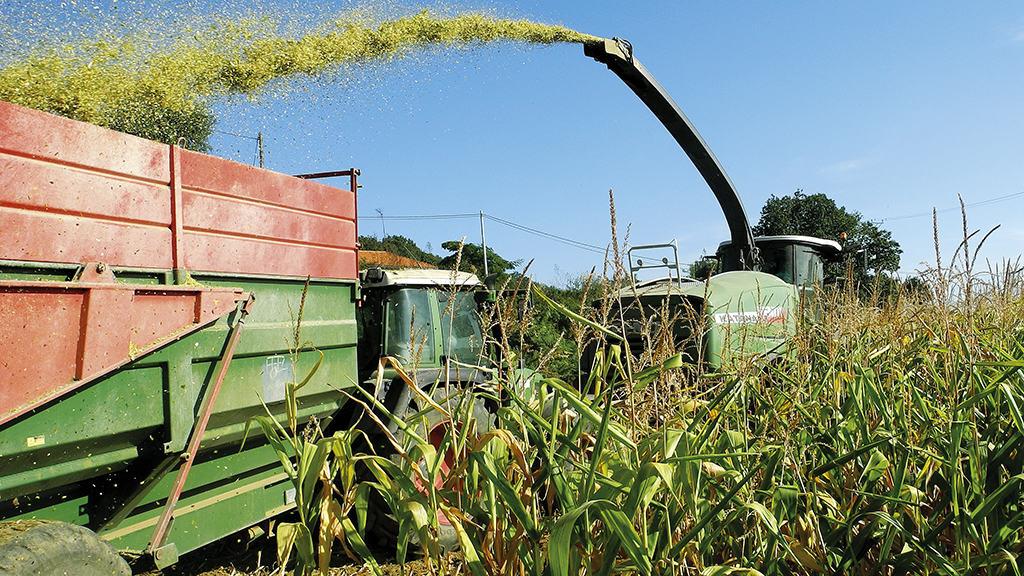 chantier ensilage de maïs Arvalis Entraid Partenariat cartes prévisionnelles