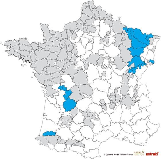 mais-ensilage-date-debut-recolte-2017-15-18aout