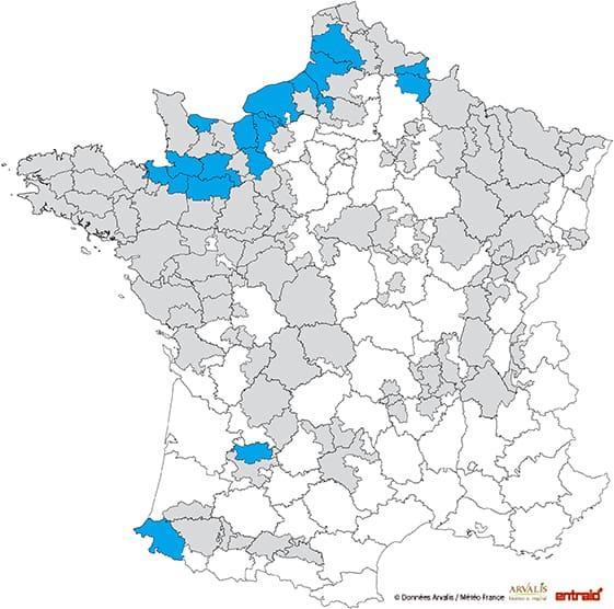 mais-ensilage-date-debut-recolte-2017-27-30aout