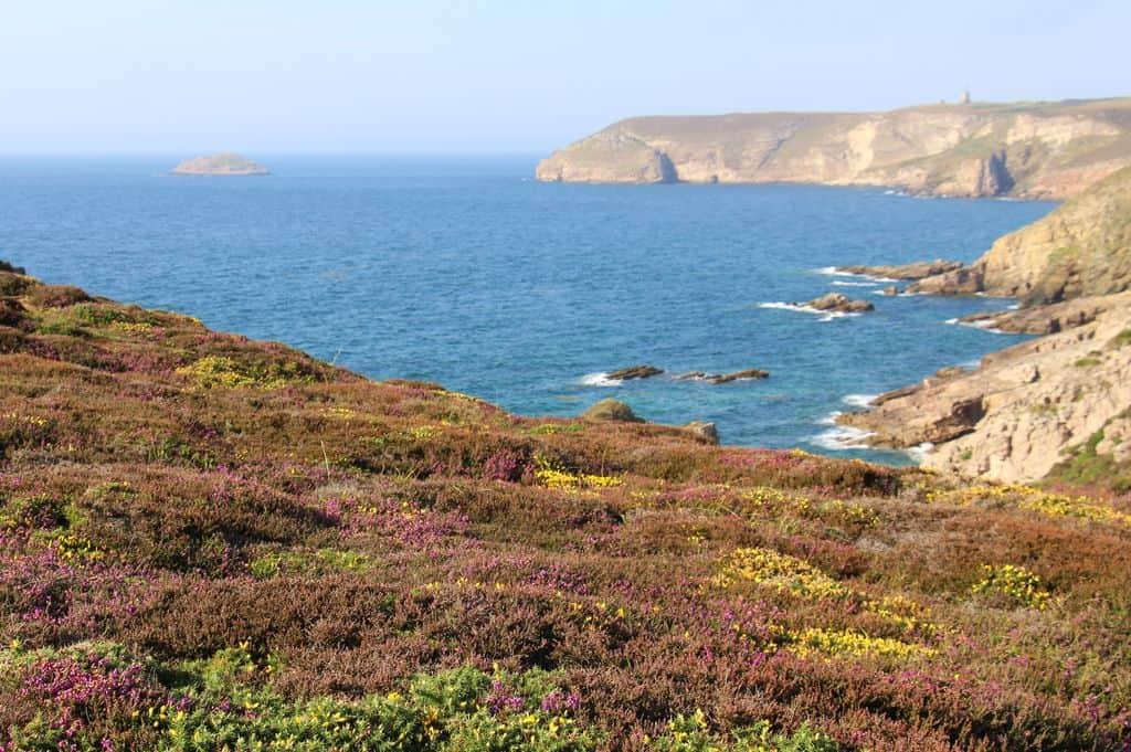 moisson-cuma-de-plurien-batteuse-hybride-john-deere-claas-cap-fréhel-landes-falaises-cote-mer-littoral-agriculture