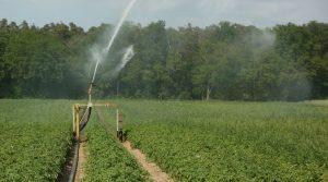 Axes d'actions pour favoriser l'économie d'eau