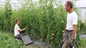 Le décret paru en mai 2017 prévoit que toute personne exerçant une activité agricole soit inscrite gratuitement et automatiquement sur le registre des actifs agricoles.