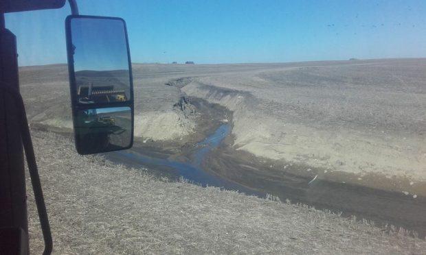Pas de talus, pas de haies le long des cours d'eau sur une exploitation conventionnelle aux Etats-Unis.