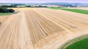 Foncier, fermage, prix agricoles, revenus agricoles, bail rural