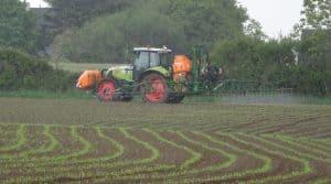 Le pulvérisateur en action sur maïs , une activité salarié de cuma