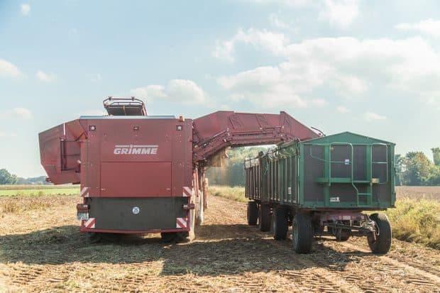 arracheuse pommes de terre Grimme trémie 15 tonnes