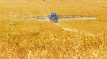 Interdiction du glyphosate en France ? Le gouvernement s'engage à des progrès en matière de pesticides d'ici 2022.