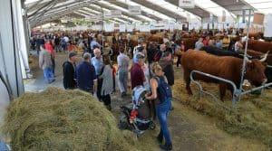 Plus de 2.000animaux et 1.500exposants, du 4 au 6 octobre, à Cournon d'Auvergne.