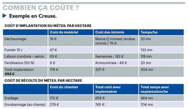Tableau avec le coût d'implantation et de récolte du méteil dans la Creuse.