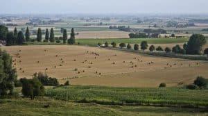 exploitations agricoles, filières de production, coopérative agricoles, François Léger, AgroParis Tech, Patrick Ferrère, SAF