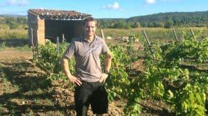 Vigne : au domaine des schistes, l'agronomie et les sols au cœur de la réflexion.