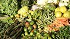 Produits bio : répondre aux français et maintenir la france au troisième rang mondial en production agriculture bio.